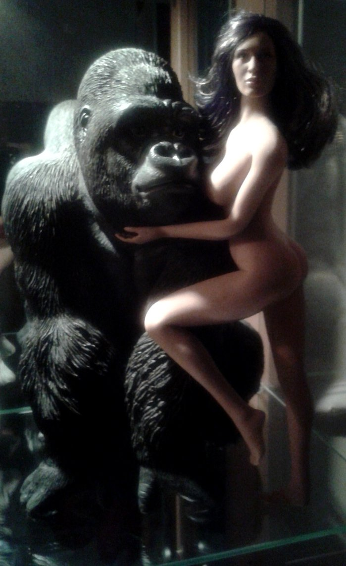 Gorilla Sex Stories